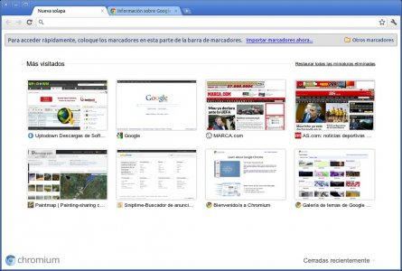 google-chrome-011.jpg (445×300)