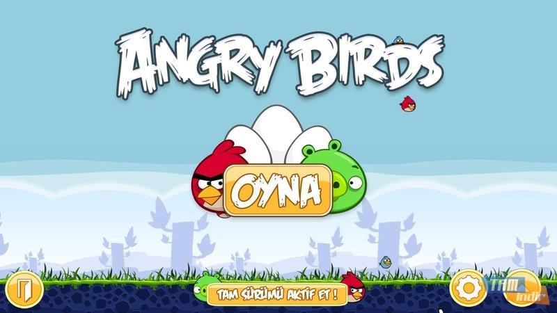 angry-birds-turkce-yama_1_800x450.jpg (800×450)